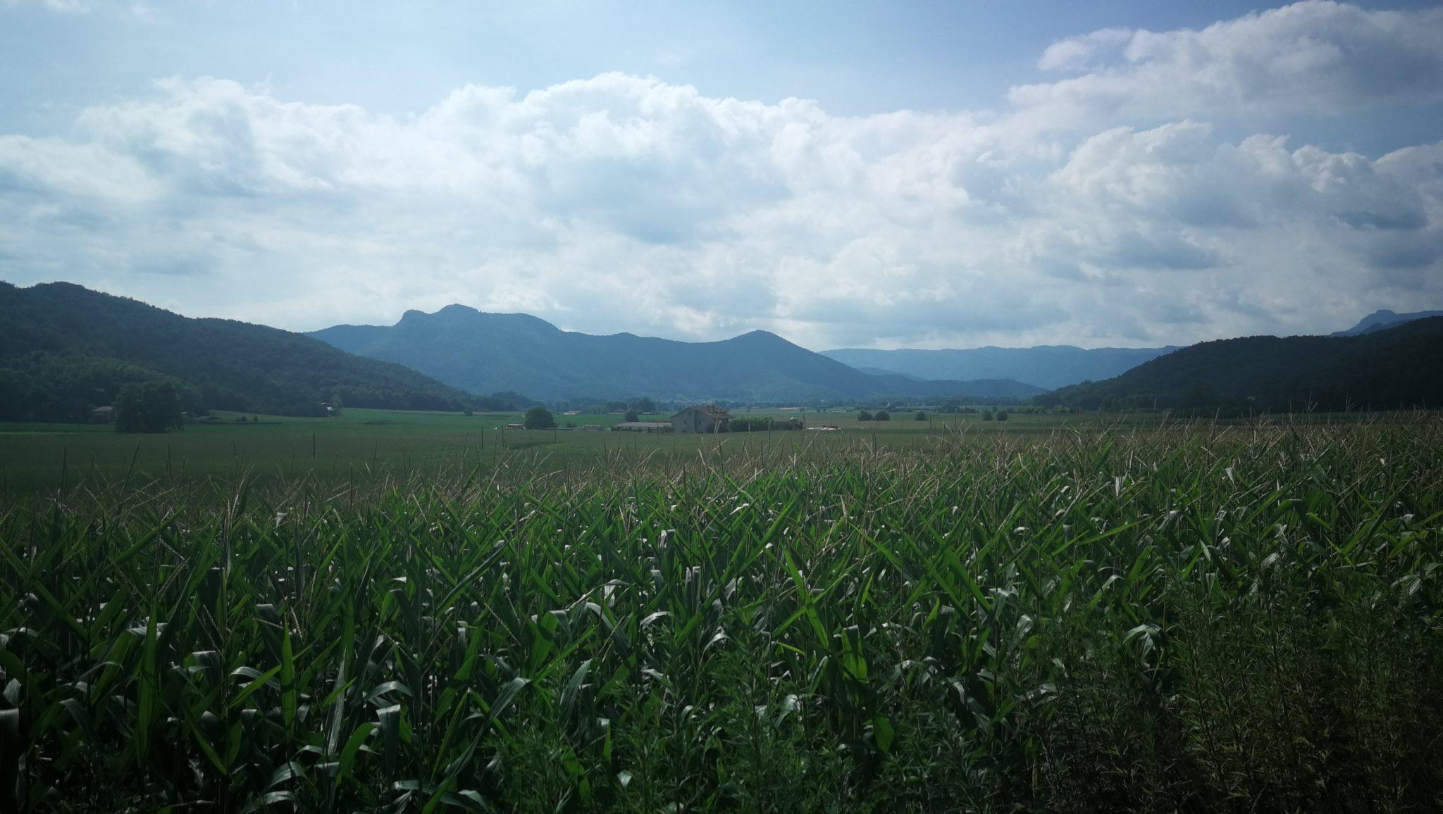 Ruta Olot -Serra de Sant Valentí de la Pinya - Carrilet