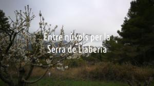 Entre núvols per la Serra de Llaberia